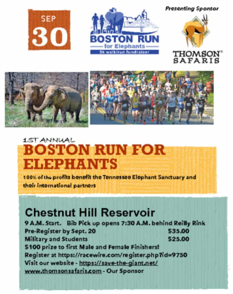 Boston Run for Elephants