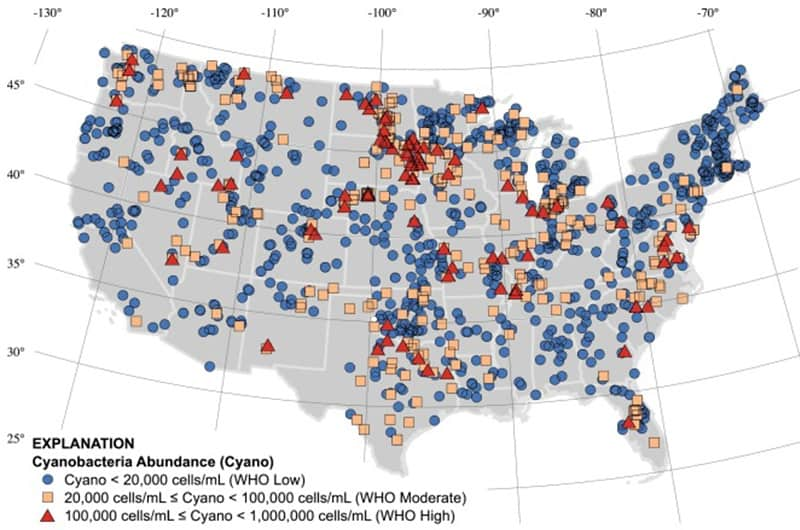 USA map of dangerous cyanobacteria growth in lakes