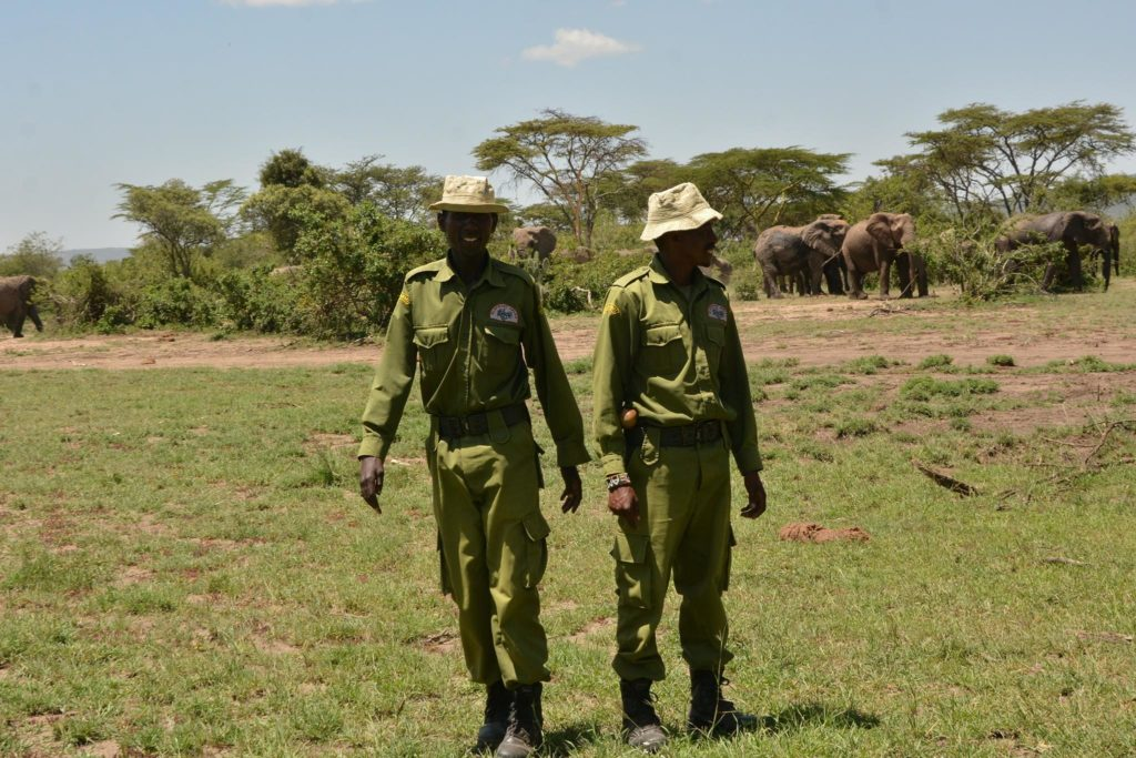 elephant aware rangers