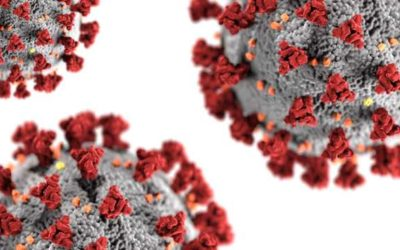 The Dangerous Delta COVID-21 Virus